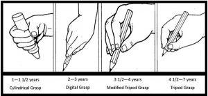 pencilgrip